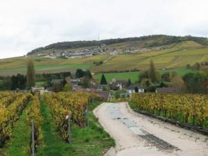 Epernay et sa région - Sparnatrail 2013