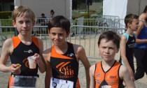 Triathlon de Courbevoie 2014