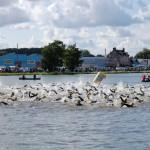 Natation au triathlon de Nevers Magny Cours 2014