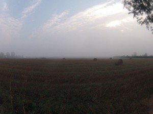 La campagne au petit matin